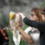 Απεργούν σήμερα οι εργαζόμενοι στους Φορείς Διαχείρισης Natura