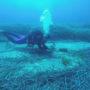 Βιολόγοι βύθισαν 1.000 πήλινα αγγεία για χταπόδια ώστε να τρέφονται οι φώκιες της Γυάρου (φωτο)