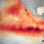 Καταρρίφθηκε το υψηλότερο ρεκόρ στη θερμοκρασία της θάλασσας στην Καλιφόρνια