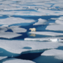 Αρκτική: Το 2018 η δεύτερη πιο ζεστή χρονιά από το 1900