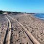 Τζιπ οργώνουν τις προστατευόμενες παραλίες στους υγροτόπους Κοτυχίου-Στροφυλιάς
