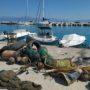 Κατάδυση 50 λεπτών έφερε στην επιφάνεια 400 κιλά σκουπίδια στο λιμάνι του Κιάτου (φωτο)