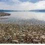Αργός θάνατος για τη λίμνη Κορώνεια