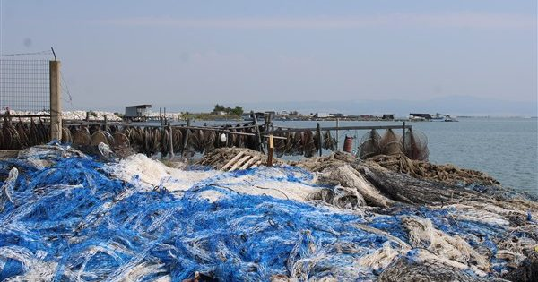 Απόβλητα μυδοκαλλιεργειών Χαλάστρας: Για πρώτη φορά ανακύκλωση 7,5 τόνων  διχτυών (φωτο) | Green Agenda | Περιβάλλον, Οικολογία, Μεσόγειος, Ενέργεια