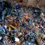 Αegean Rebreath: Έρευνα για τη μείωση των πλαστικών μιας χρήσης στην Καλαμάτα